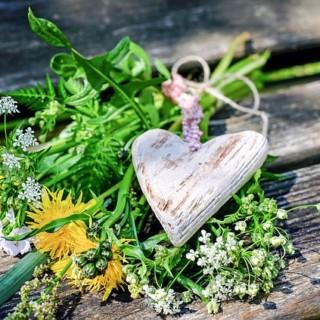 Luční květiny a kamenné srdce